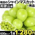 ぶどう 和歌山有田産 シャインマスカット 1房 1組 1房600g以上 秀品 種なし 極甘