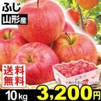 りんご 山形産 ふじりんご 10kg 送料無料【2017年新物りんご・秋発送】