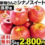 りんご リンゴ 長野産 シナノスイート 5kg 送料無料【2018年新物りんご・秋発送】 グルメ