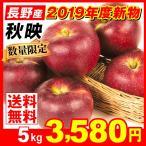 りんご 長野産 秋映(あきばえ)5kg 送料無料【2017年新物りんご・秋発送】