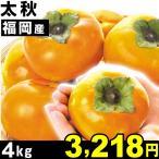 柿 福岡産 太秋 4kg 1組