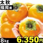 柿 福岡産 太秋 8kg 1組