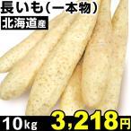 ナガイモ 北海道産 長いも(一本物) 10kg 1箱