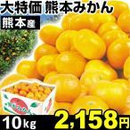 みかん 大特価 熊本産 みかん 10kg 1組