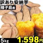 安納芋 種子島産 訳あり安納芋 5kg 1組 中園ファーム