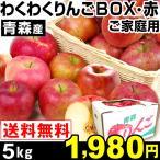 リンゴ 青森産 わくわくりんごボックス・赤 5kg 1箱 ご家庭用 送料無料【2017年新物りんご・秋発送】