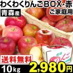 リンゴ 青森産 わくわくりんごボックス・赤 10kg 1組 ご家庭用 送料無料【2017年新物りんご・秋発送】