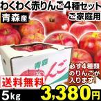 リンゴ 青森産 わくわく赤りんご4種セット 5kg 1箱 送料無料【2017年新物りんご・秋発送】
