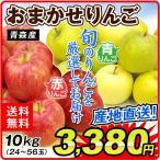 リンゴ ご家庭用 青森産 おまかせりんご 10kg 1箱 送料無料【2017年新物りんご・秋発送】