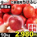 リンゴ 青森産 ちびふじ ご家庭用 10kg 1箱 送料無料 小玉りんご
