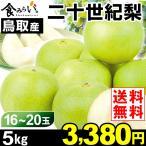 梨 【お買得】鳥取産 二十世紀梨 5kg 1箱 送料無料 ご家庭用 和梨