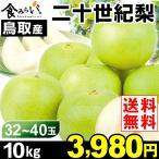 梨 【お買得】鳥取産 二十世紀梨 10kg 1箱 送料無料 ご家庭用 訳あり 和梨
