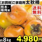 柿 【超買得】熊本・福岡産 太秋柿 約8kg 1組 送料無料 ご家庭用  甘柿
