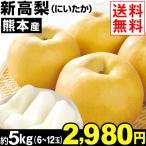 梨 熊本産 新高梨 約5kg 1箱 送料無料 和梨 にいたか梨