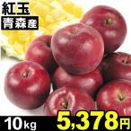 りんご 青森産 紅玉 10kg1箱 食品