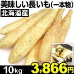 ナガイモ 北海道産 美味しい長いも (一本物) 10kg1組 長いも 食品