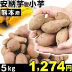 seikaokoku_s-fs1884
