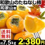 柿 【超買得】和歌山産 たねなし柿 約7.5kg 1箱 送料無料 ご家庭用 平核無 刀根柿