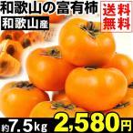 柿 【超買得】和歌山産 富有柿 約7.5kg 1箱 送料無料 ご家庭用 甘柿の王様