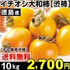 柿 イチオシ 徳島産 大和柿 【干柿用渋柿】 10kg1箱 送料無料 軸付き 特別版