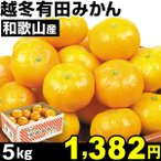 みかん 和歌山産 越冬有田みかん 5kg1箱 みかん 食品