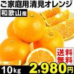 みかん 和歌山産 ご家庭用 清見オレンジ 10kg1箱 ご家庭用 送料無料 特別版