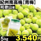 生梅 和歌山産 紀州南高梅・青梅 5kg1箱 うめ 冷蔵 食品