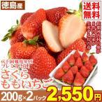 イチゴ 徳島産 さくらももいちご 約200g×2箱1組 送料無料  苺 赤秀品 徳島県佐那河内村のブランド苺