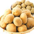 新じゃがいも 鹿児島産 大玉新ばれいしょ 10kg1箱 送料無料【3Lサイズ限定】 ジャガイモ 馬鈴薯 春じゃがいも みずみずしくて皮ごと美味しい
