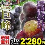 ぶどう 名産地の巨峰 秀品 約1kg1箱 送料無料 3〜4房入り 化粧箱 あふれる果汁のぶどうの王様【数量限定】
