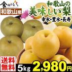 梨 和歌山産 和歌山の美味しい梨 幸水/豊水/長寿 各5kg 1箱 送料無料 和梨 赤梨★いずれか1品種をお選びください★