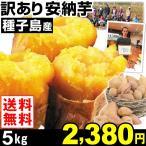 安納芋 種子島産 訳あり 安納芋 5kg1箱 送料無料 さつまいも 食品