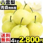 梨 南部産 八雲梨 4kg1箱 送料無料 やくも梨 食品