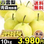 梨 南部産 八雲梨 10kg1箱 木箱 送料無料 やくも梨 食品