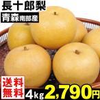 梨 南部産 長十郎梨 4kg1箱 送料無料 ちょうじゅうろう梨 食品