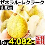 梨 山形産 ゼネラル・レクラーク 5kg1箱 洋梨 送料無料 食品