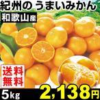 みかん 和歌山産 紀州のうまいみかん 5kg1箱 送料無料 蜜柑 食品