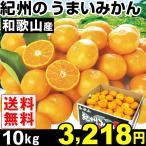 みかん 和歌山産 紀州のうまいみかん 10kg1箱 送料無料 蜜柑 食品