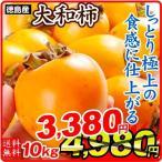 柿 徳島産 大和柿 【干柿用渋柿】 10kg1箱 軸付き 送料無料 やまと柿 食品