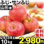 りんご 山形産 ふじ・サンふじ 10kg1組 送料無料 林檎 食品