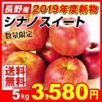 りんご シナノスイート 5kg1箱 長野県産 ご家庭用 林檎 2019年新物りんご