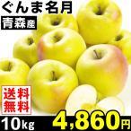 りんご ぐんま名月 10kg1箱 青森県産 黄色りんご 林檎 食品 グルメ 果物