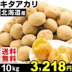 じゃがいも 北海道産 キタアカリ 10kg1組 送料無料
