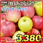 リンゴ【緊急大放出】青森産 訳ありおまかせりんご 10kg 1箱 送料無料【数量限定】加工用 赤りんご 青りんご ご家庭用【ただいま出荷中】