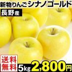 りんご 長野産 シナノゴールド 5kg 送料無料【2018年新物りんご・秋発送】 グルメ