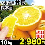 みかん 熊本産 ご家庭用 甘夏 10kg1箱 送料無料 食品