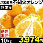 みかん 熊本産 ご家庭用 不知火オレンジ 10kg1箱 送