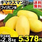 マンゴー フィリピン産 ギマラスマンゴー 約2.8kg1箱 送料無料 食品 グルメ