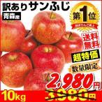 りんご 大特価 青森産 サンふじ 10kg1箱 送料無料 ご家庭用 林檎 食品 グルメ