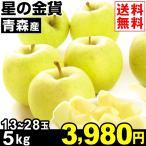 りんご 青森産 星の金貨 5kg1箱 送料無料 林檎 食品